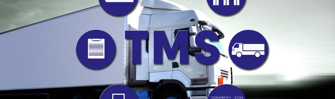 TMS - itLoger